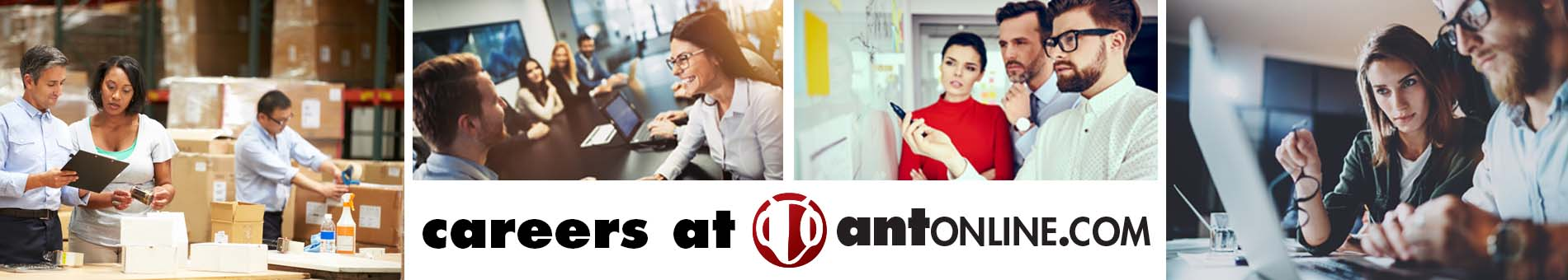 careers at antonline